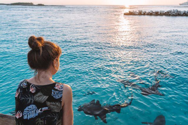 Bahamas Exumas Yacht Charter Highborne Cay Nurse Sharks