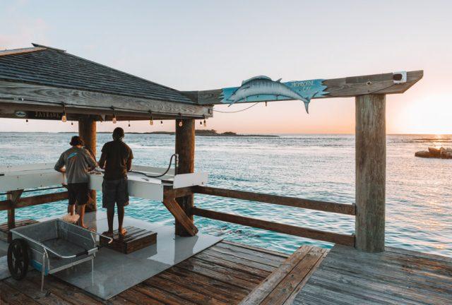 Bahamas Exumas Yacht Charter Highborne Cay Sharks