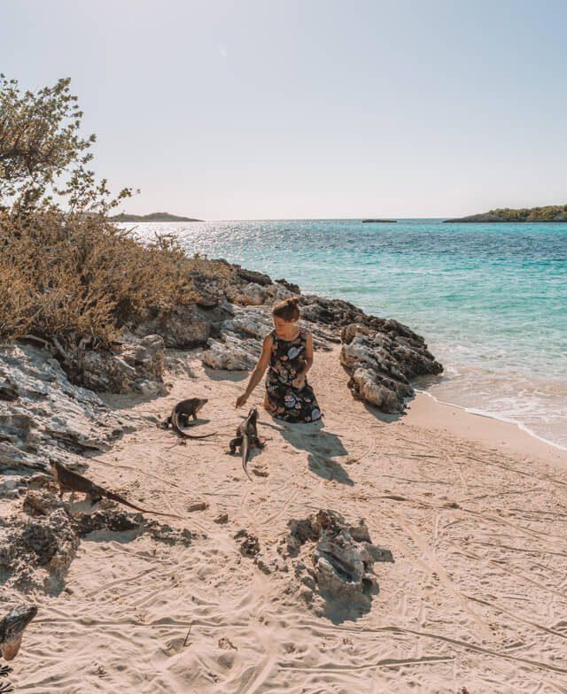 Bahamas Exumas Yacht Charter Iguana Island