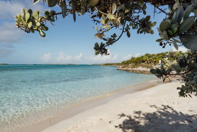 Bahamas Exumas Yacht Charter Iguana Island Strand