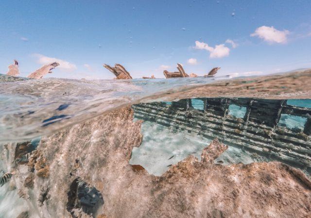 Bahamas Exumas Yacht Charter Normans Cay Wrack
