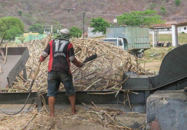 Brasilien Urlaub Ceara Fortaleza Zuckerrohr Fabrik