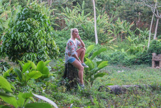 Brasilien Urlaub Ceara Fortaleza Kaffeeplantage Aguas Finas