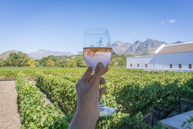 Kapstadt Urlaub Weinprobe
