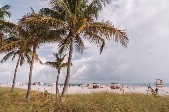 Miami Beach Sehenswuerdigkeiten Urlaub South Beach