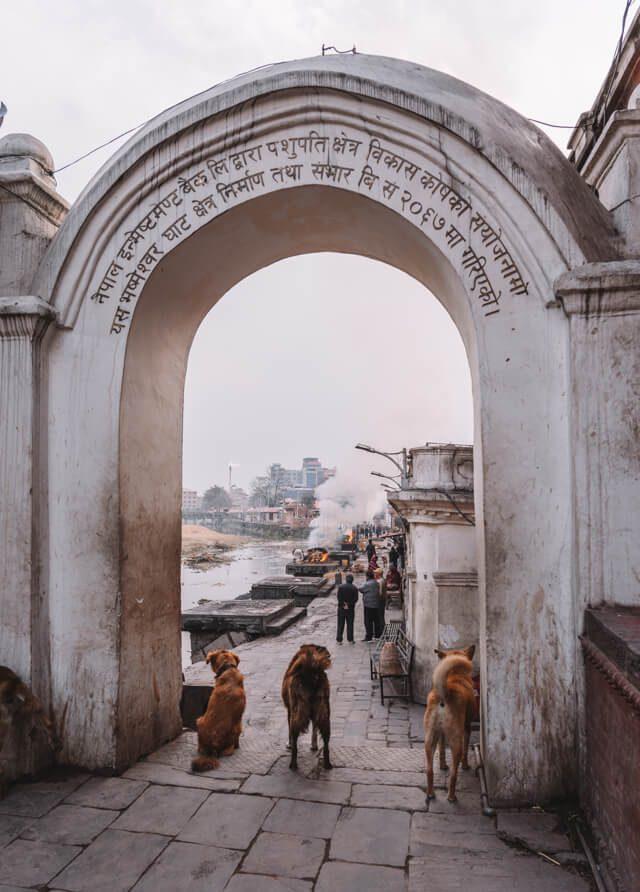 Nepal Reisen Kathmandu Pashupatinath Tempel