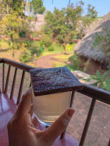 Yoga Urlaub Indien SwaSwara Ayurveda Massage Tee