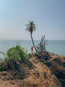 Yoga Urlaub Indien Half Moon Bay Palme
