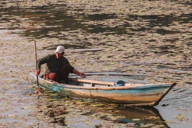 Highlights Nepal Pokhara Fewa See Fischer