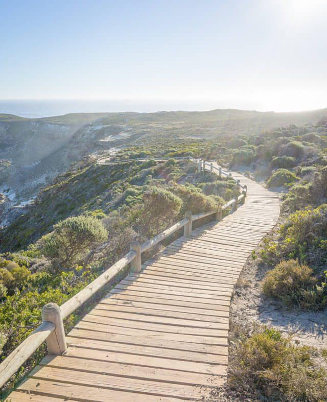 Kap der Guten Hoffnung Weg zum Diaz Beach