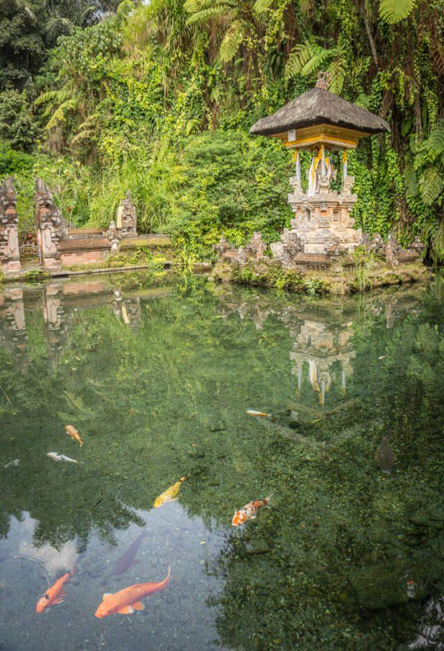Bali Sehenswuerdigkeiten Gunung Kawi Tempel