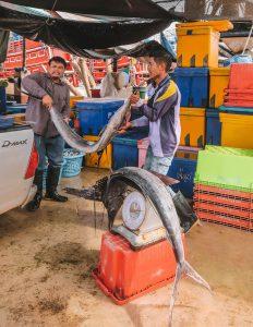 Fischmarkt Chumphon