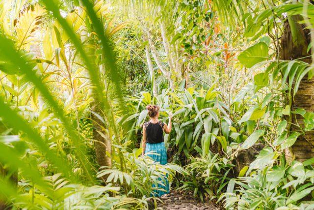 Bora Bora Urlaub Hotel Rohotu Fare Lodge