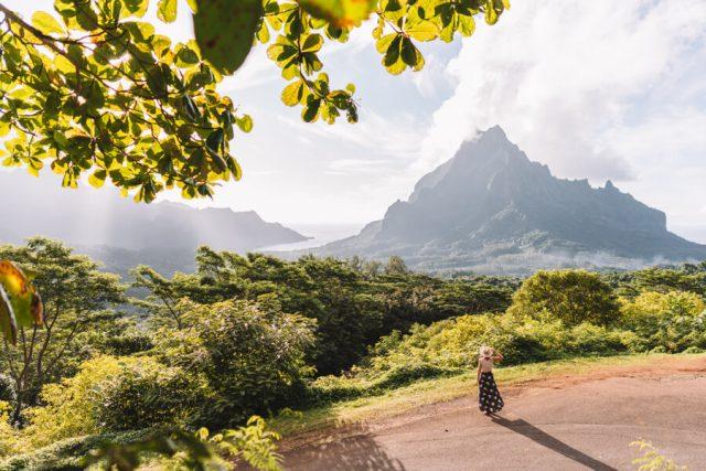 Moorea Belvedere Viewpoint