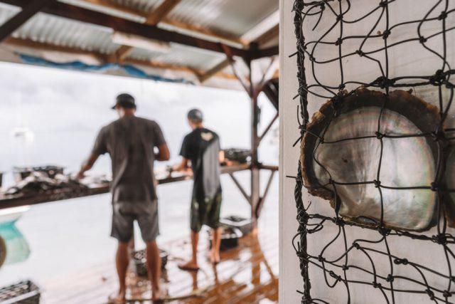 Perlenfarm Tahaa Tahiti