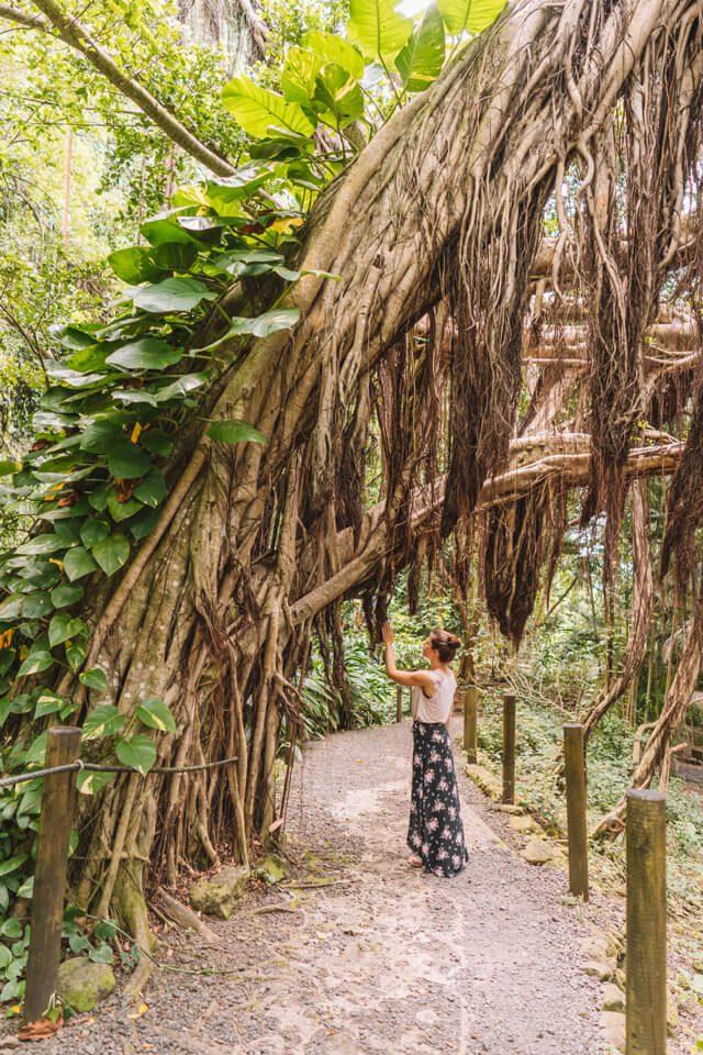 Tahiti Urlaub Maraa Grotten