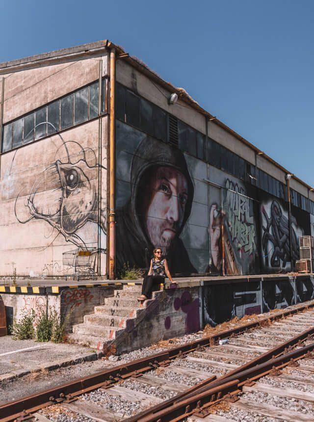 Linz Sehenswuerdigkeiten Mural Harbour Oesterreich