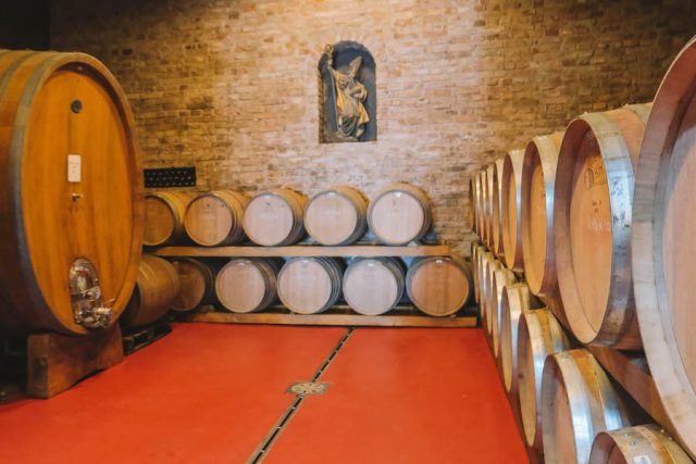 Weingut Targu Mures Villa Vinea