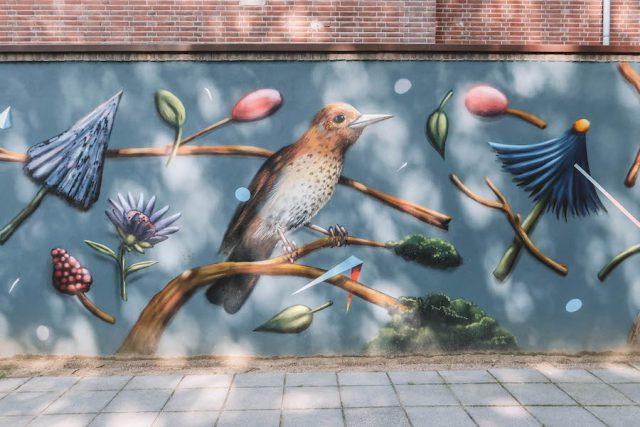 Breda Streetart Vogel