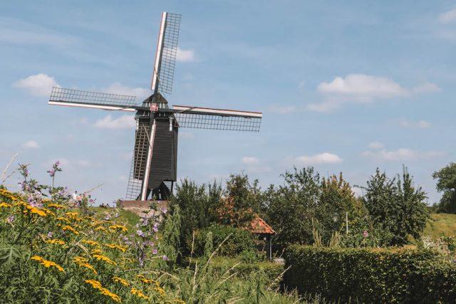 Heusden Windmühle