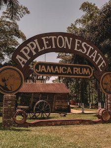 Jamaika Sehenswuerdigkeiten Appleton Estate