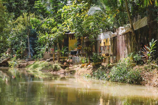 Jamaika Sehenswuerdigkeiten Bambus Rafting