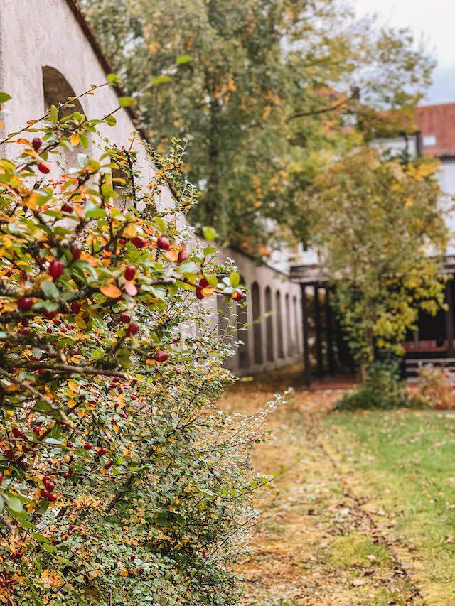 Bad Woerishofen Kuroase Garten