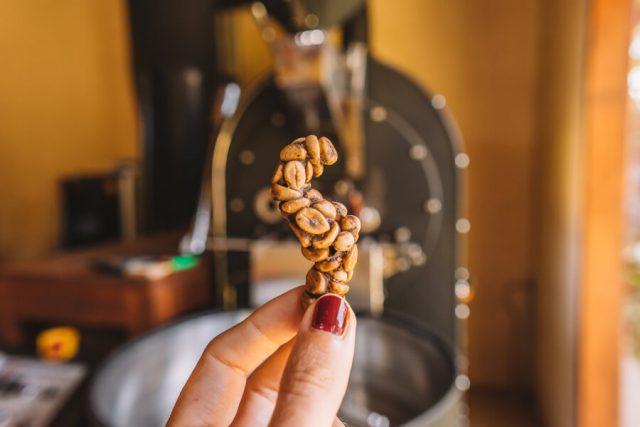 Munduk Bali Luwak Kaffee