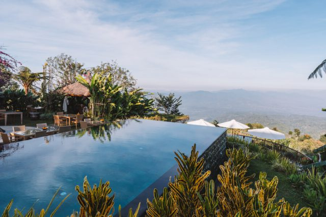 Munduk Bali Moding Plantation