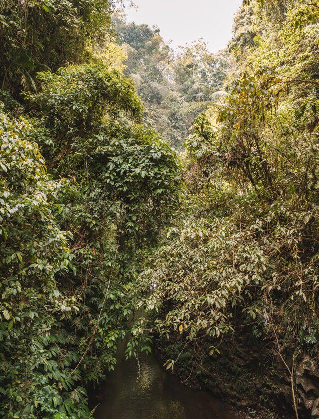 Munduk Bali Nung Nung Wasserfall