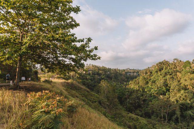 Ubud Bali Campuhan Ridge Walk Aussicht