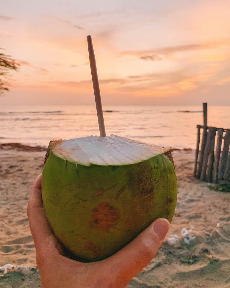 Karibische Kueche Kokosnuss