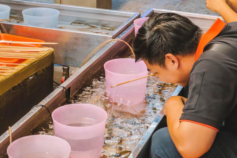 Shilin Night Markt Garnelen Fischen
