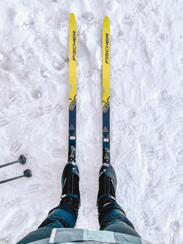 Langlaufen Oesterreich Skier