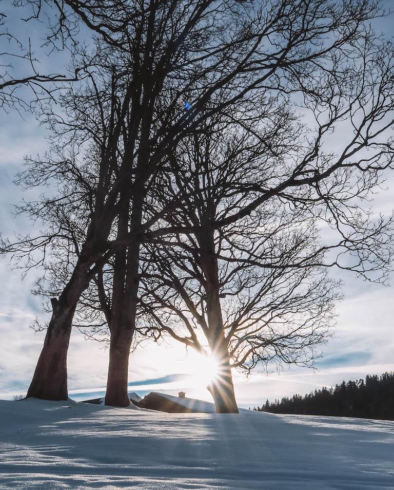 Ramsau am Dachstein Winterwonderland