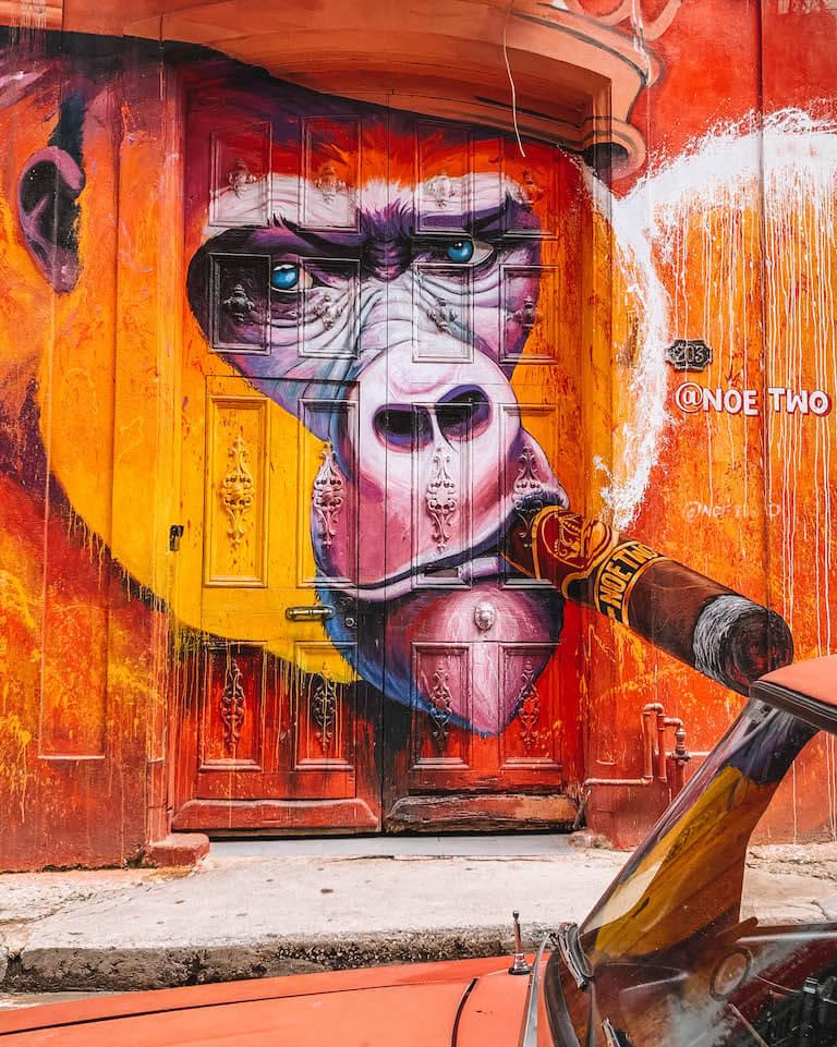 Havanna Streetart Affe