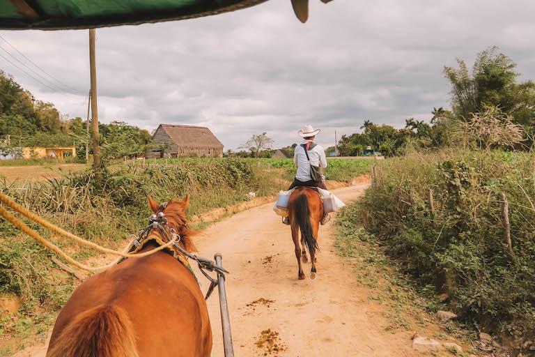 Valle de Vinales Pferdkutsche