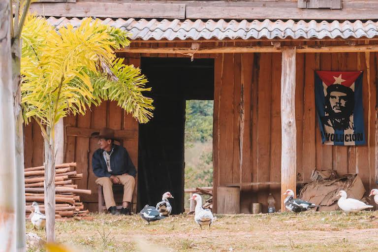 Vinales Ecofarm Cowboys