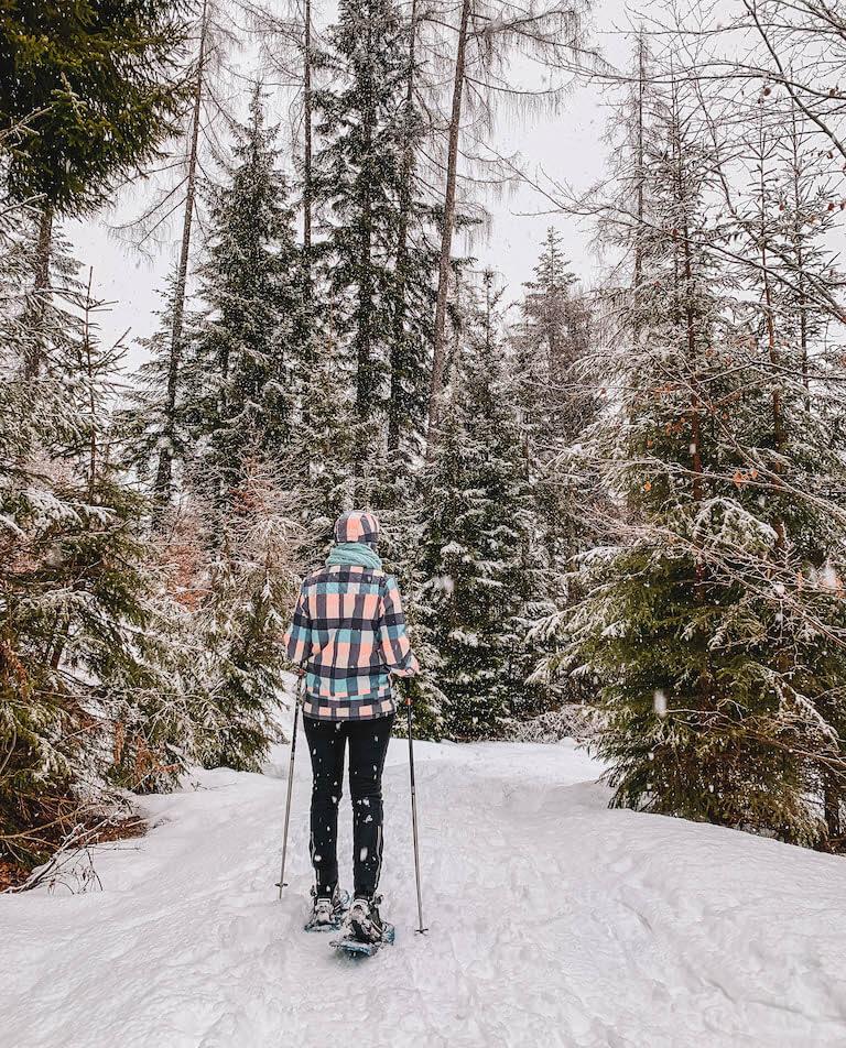Kitzbuehler Alpen Pillerseetal Schneeschuhwanderung