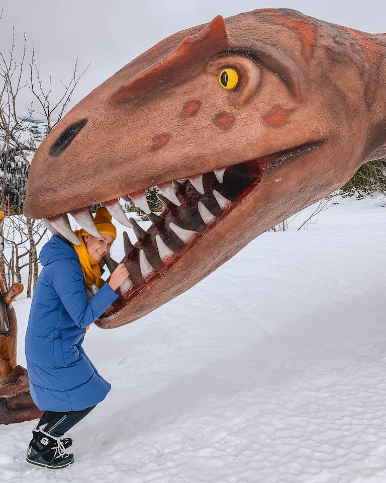 Kitzbuehler Alpen Steinplatte Dinosaurier
