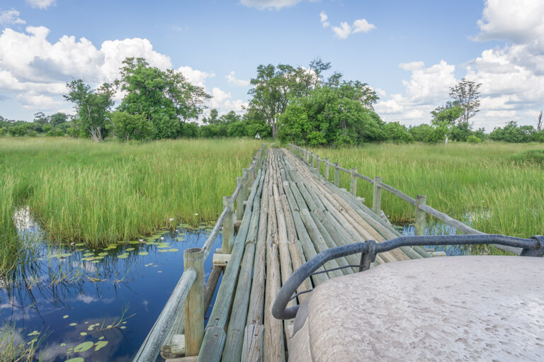 Reiseziele Mai Botswana Moremi Wildreservat