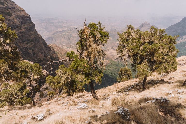 Simien Mountains Berglandschaft Natur