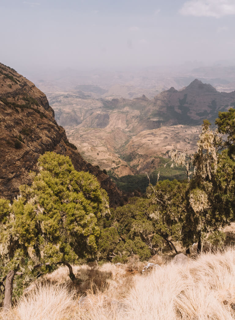 Simien Mountains Landschaft Schlucht