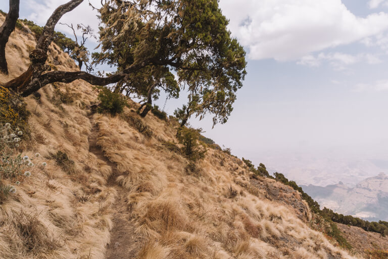 Simien Mountains Wanderweg