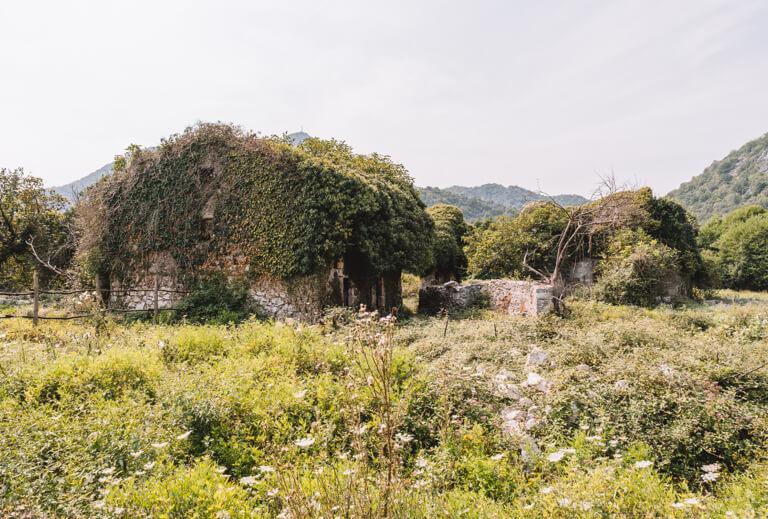 Skadarsee Montenegro Sehenswuerdigkeiten