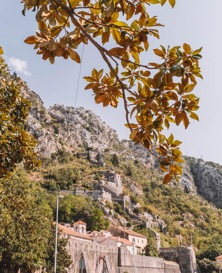 Bucht von Kotor alte Festungsmauer