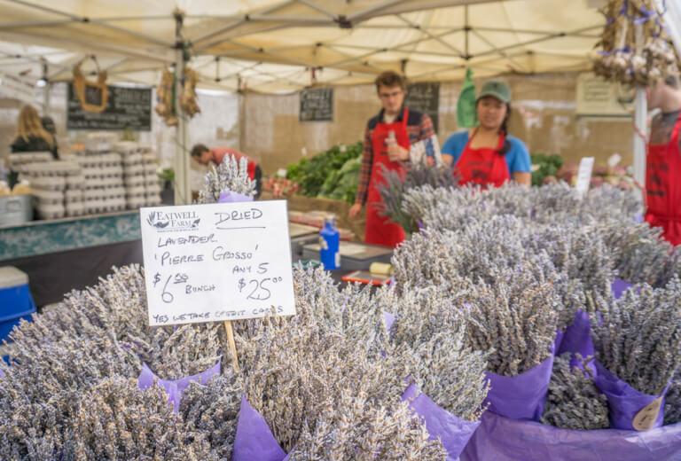 Ferry Plaza Farmers Market Lavendel