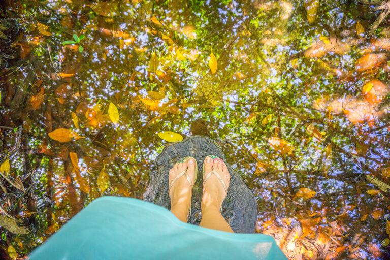 Cenote Sian Kaan Nationalpark Arco Maya