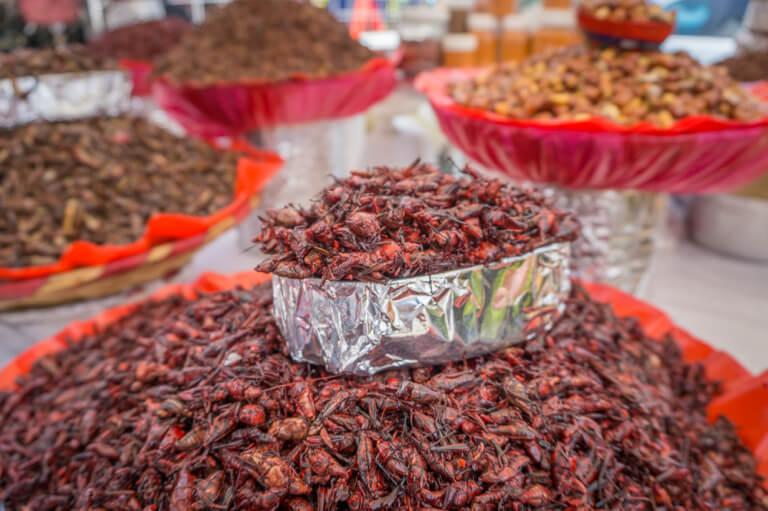 Chapulines Oaxaca Mexiko Markt