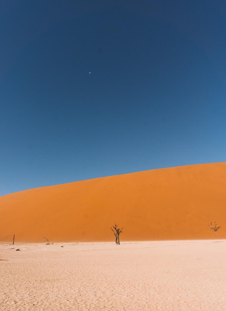 Deadvlei Namibia Wueste
